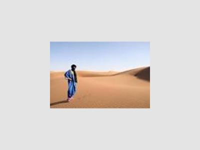 Agence caravane renard du desert
