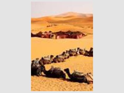 Caravane Spirit Of Morocco : Agence de voyage