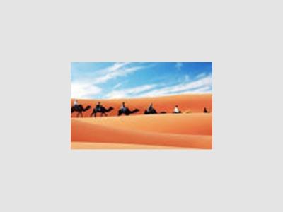 MUSTANG TRAVEL : Voyager au Maroc