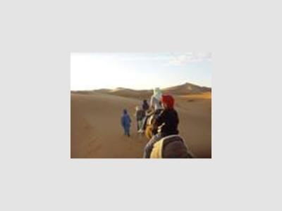 Sahara Welcome
