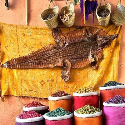 Photo Shopping tour de Marrakech