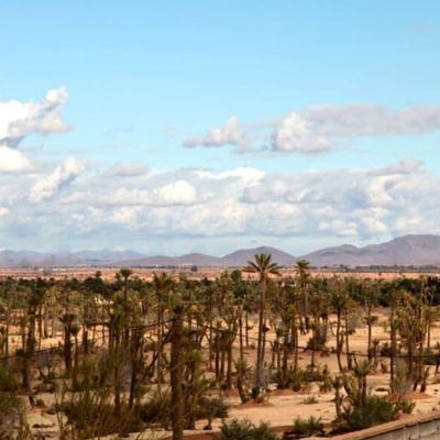 Photo Balades en chameau et quad au désert de la Palmeraie de Marrakech
