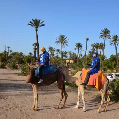 Photo Balade à chameau autour de Marrakech avec pause thé