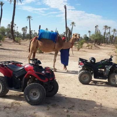 Photo Balade en chameau et en quad à Marrakech