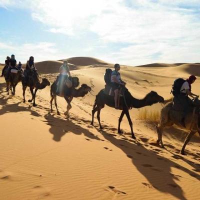 Photo Depuis Marrakech: Marrakech, Fès et désert en 3 jours