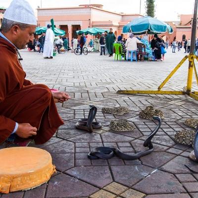 Photo Découvrez les souks de Marrakech