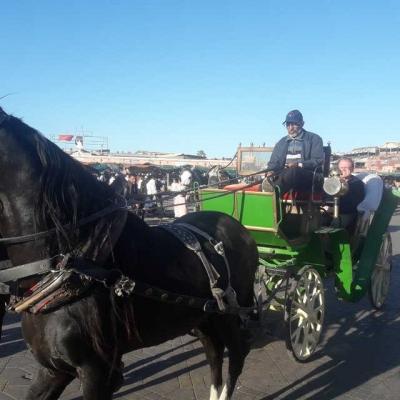 Photo Marrakech: tour en calèche