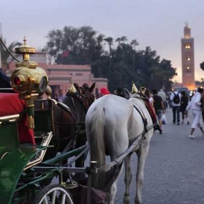 Photo Marrakech: visite guidée d'une journée avec déjeuner